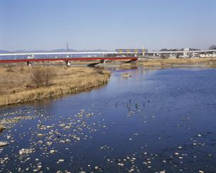 多摩モノレールと多摩川の写真素材 [FYI03257804]