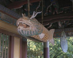 仏国寺の写真素材 [FYI03257834]