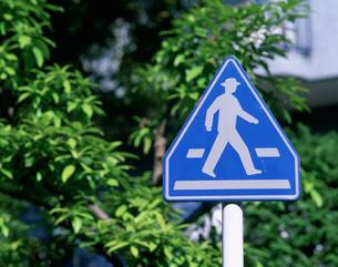 道路標識の写真素材 [FYI03258167]