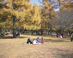 日光国立公園へ遠足の小学生の写真素材 [FYI03260630]