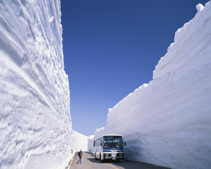 雪の大谷を行く 立山・黒部アルペンルート 立山室堂の写真素材 [FYI03260656]
