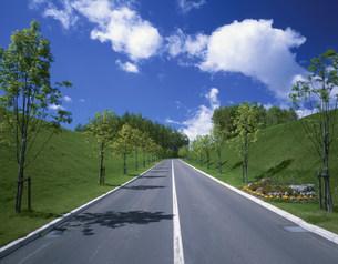 道路の写真素材 [FYI03260728]