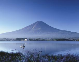釣り人と富士山 河口湖の写真素材 [FYI03260744]