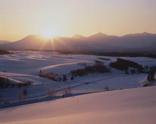 雪国の夜明けの写真素材 [FYI03260985]