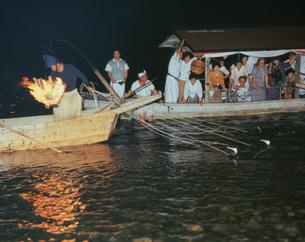 長良川の鵜飼の写真素材 [FYI03261002]