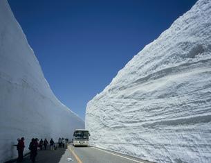 雪の大谷を行く室堂平の写真素材 [FYI03261081]