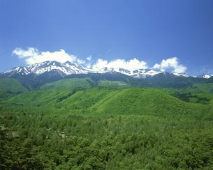 乗鞍岳と乗鞍高原 6月  長野県の写真素材 [FYI03261150]