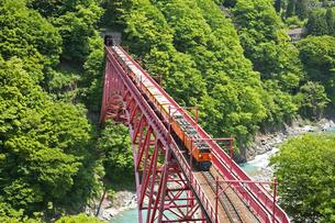 黒部峡谷鉄道の写真素材 [FYI03261227]