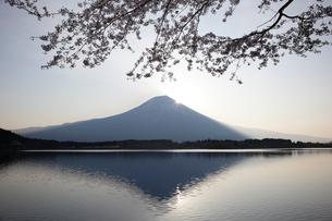 夜明けの富士山の写真素材 [FYI03261234]