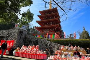高幡不動尊金剛寺のだるま市の写真素材 [FYI03263310]