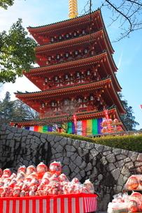 高幡不動尊金剛寺のだるま市の写真素材 [FYI03263312]