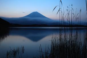 田貫湖の黎明逆さ富士の写真素材 [FYI03263366]