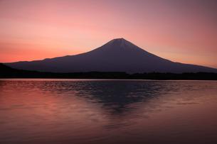 朝焼けの田貫湖と富士山の写真素材 [FYI03263370]