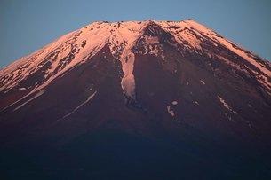 紅に染まる残雪の富士山の写真素材 [FYI03263372]