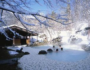 白骨温泉の冬 泡の湯の写真素材 [FYI03263563]