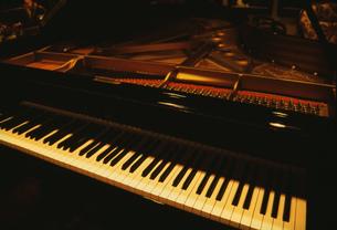 ピアノの鍵盤の写真素材 [FYI03264247]