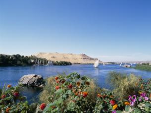 ナイル川と西岸の写真素材 [FYI03265290]