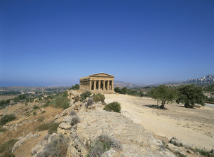 コンコルデイア神殿 アグリジェントの写真素材 [FYI03265461]