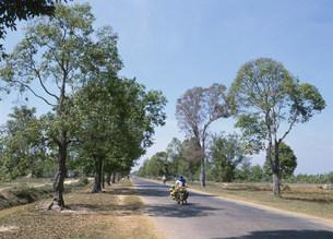 道路の写真素材 [FYI03265713]