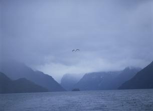 ナウエル ウアピ湖  パタゴニア アルゼンチンの写真素材 [FYI03266911]