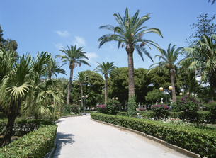 公園 トラーパニ 7月シチリア島 イタリアの写真素材 [FYI03267127]