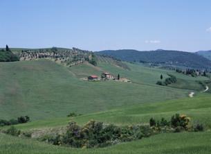 丘の中腹の農家 オルチャ渓谷の写真素材 [FYI03267406]