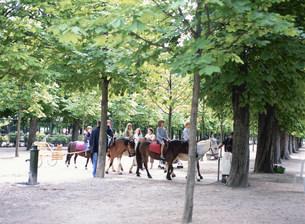 チュイルリー公園 子供の乗馬の写真素材 [FYI03267589]