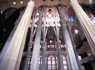 サグラダ・ファミリア聖堂内部の写真素材 [FYI03267856]