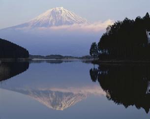 田貫湖と残照の富士山の写真素材 [FYI03268032]