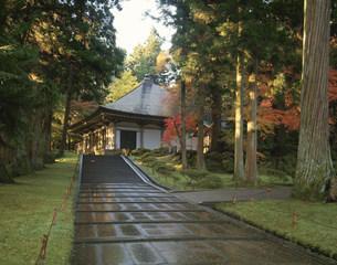 秋の中尊寺金色堂の写真素材 [FYI03268106]