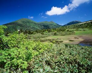 北八甲田連峰(左から赤倉岳・井戸岳・大岳)の写真素材 [FYI03268156]