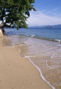 色の浜の海の写真素材 [FYI03268199]
