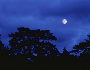 気比の松原の月の写真素材 [FYI03268239]