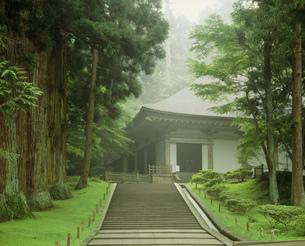 中尊寺金色堂の写真素材 [FYI03268251]