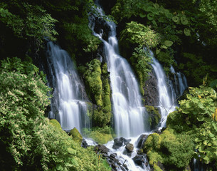 夏の吐瀧の滝の写真素材 [FYI03268411]