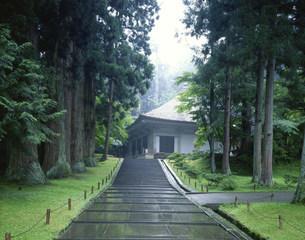 中尊寺 金色堂の写真素材 [FYI03268482]