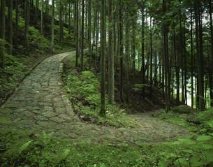 旧中山道の写真素材 [FYI03268717]