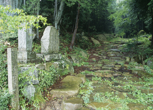 旧中山道 琵琶峠の石畳の写真素材 [FYI03268752]