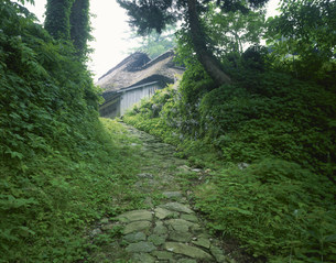 旧北国街道木の芽峠 民家は今庄町の写真素材 [FYI03268809]