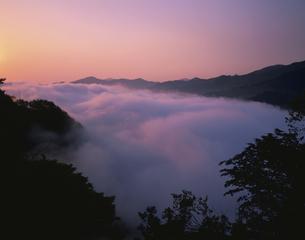 雲海翠波高原より 伊予三島市の写真素材 [FYI03268984]
