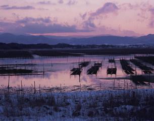 松川浦夕景の写真素材 [FYI03269067]