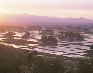 水田と散居村の夕景の写真素材 [FYI03269110]