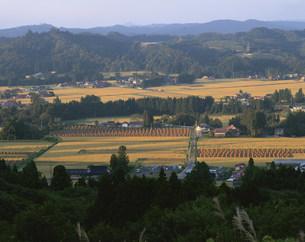 衣川古戦場を望むの写真素材 [FYI03269133]