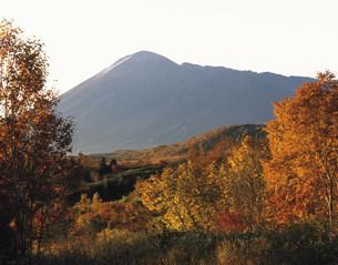 八幡平より望む朝の岩手山の写真素材 [FYI03269315]