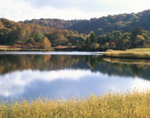 八幡平大沼の秋の写真素材 [FYI03269318]