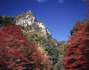 紅葉の豪渓の写真素材 [FYI03269335]