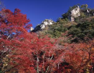 紅葉の豪渓の写真素材 [FYI03269338]