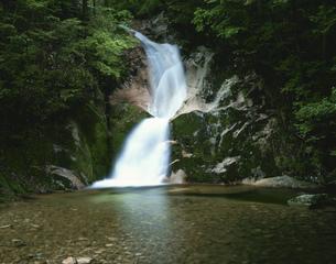 寂地峡五竜の滝 竜尾の滝の写真素材 [FYI03269610]