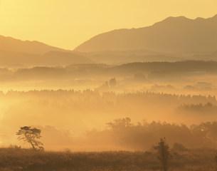 朝霧の飯田高原の写真素材 [FYI03269749]