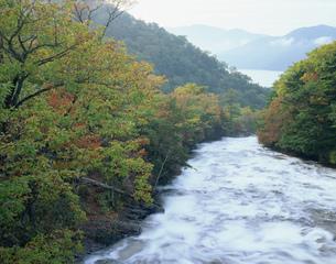 秋の竜頭の滝の写真素材 [FYI03269797]